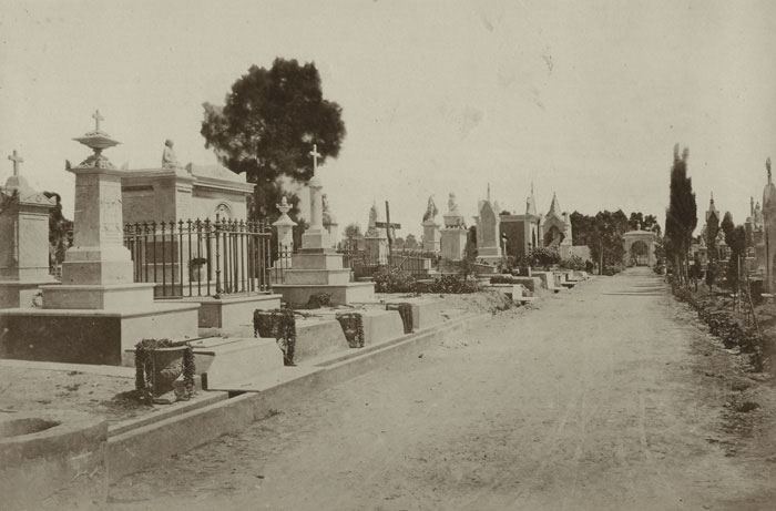 Alexandria Christian cemetery in the 1880s